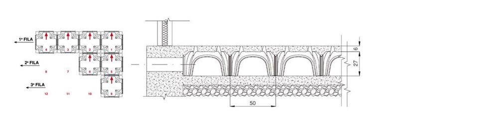 Biomodulo- Daliforma